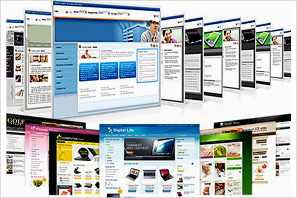 Thiet ke website seo